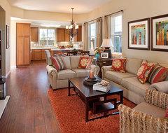 Model Home contemporary-living-room