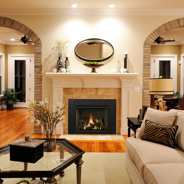 Houzz Living Room Fireplace: Gas Fireplace Insert Collection By IronStrike