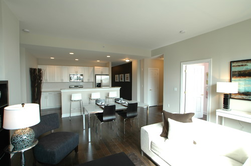Home Design Ideas For Condos: STAGED ABOVE: Condo Living Rooms Contemporary