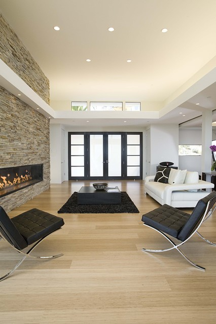 great room contemporary living room