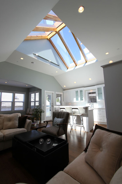 Sky Roof & Great Room With Sky Roof Traditional-living-room