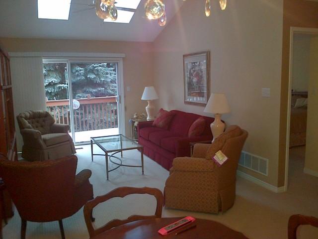 Hallum traditional-living-room