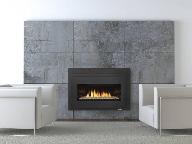 Heat Glo Cosmo Gas Insert Modern Indoor Fireplaces
