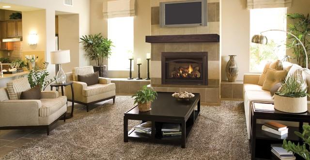 Heat U0026 Glo Grand I35 Gas Insert Traditional Living Room