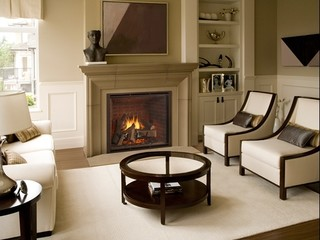 Heat & Glo TRUE Series Gas Fireplaces