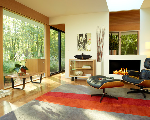 Herman Miller Eames Lounge Chair Living Room contemporary-living-room