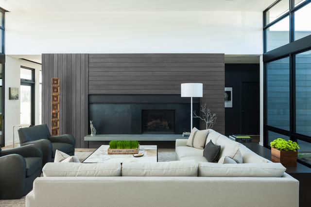 High Desert Modern Modern Living Room
