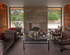 Hill Country Residence modern-living-room