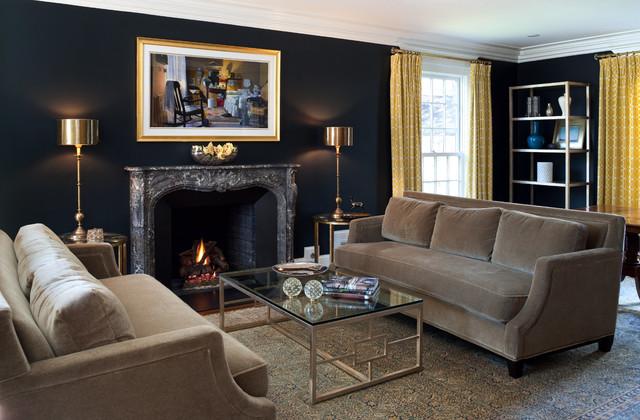 Historical DC Handsome Update transitional-living-room
