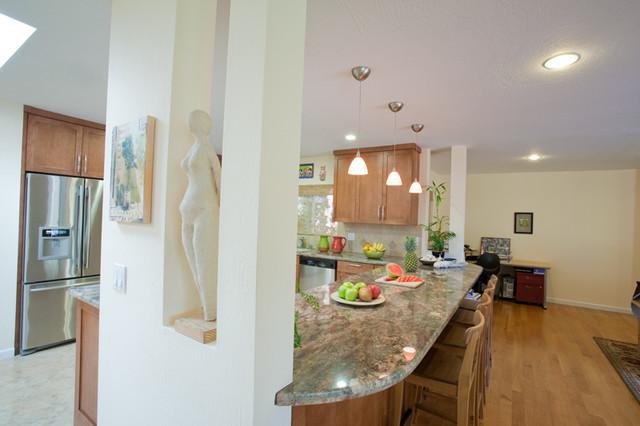 home 2 contemporary-living-room