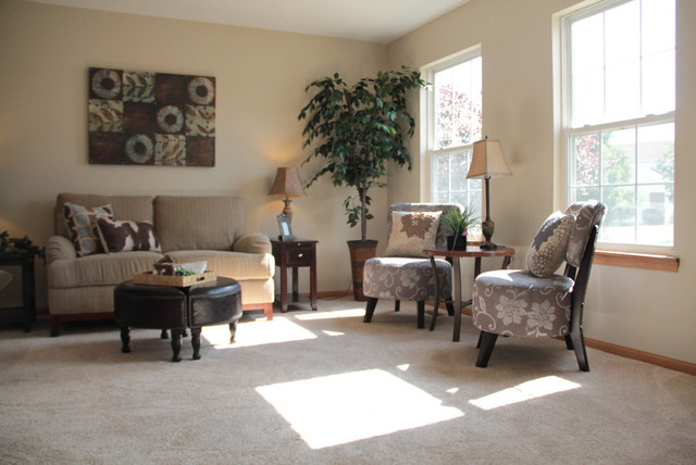 Home Decor Staging Contemporary Living Room Chicago By Kendall Partners Ltd