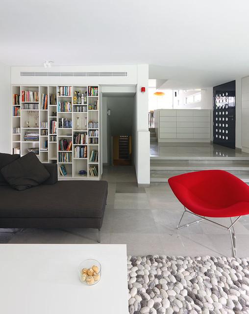 house L modern-living-room