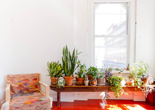 Houzz Tour: Eclectic, Minimalist Brooklyn Apartment eclectico-salon