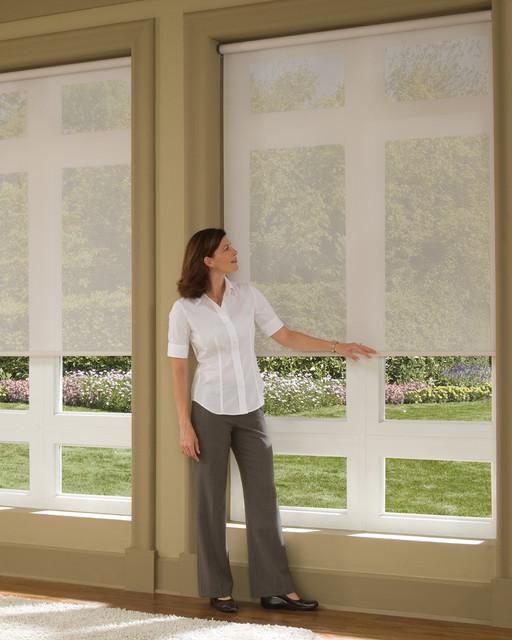 incredible living room window treatments | Hunter Douglas Designer Roller Shade - Traditional ...