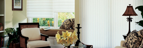 Hunter Douglas Products traditional-living-room