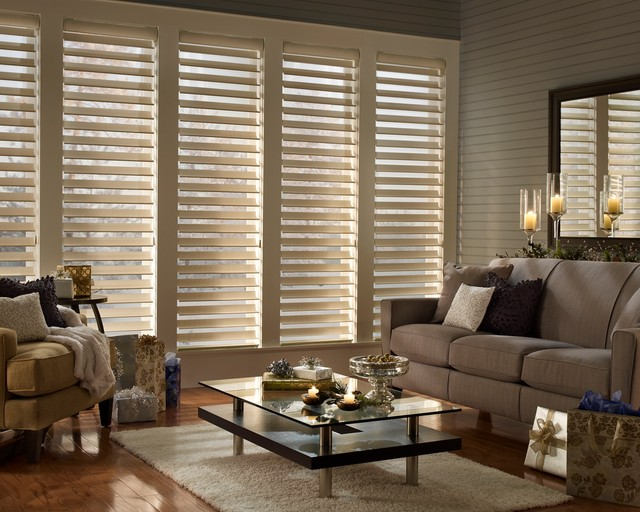 Hunter Douglas Silhouette Window Shadings Traditional
