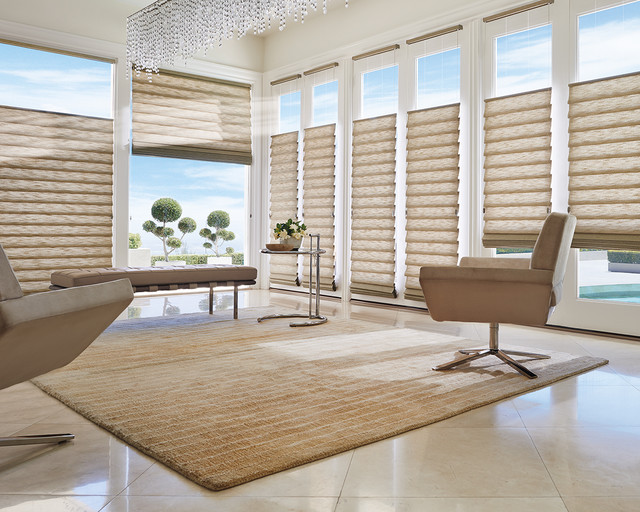 Hunter douglas top down bottom up vignette contemporary - Houzz window treatments living room ...