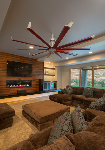 living room with fan collections