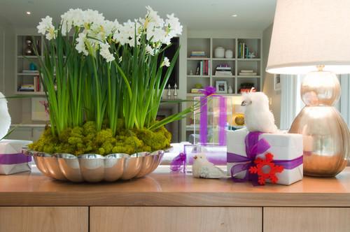 Bulbi In Vaso Di Vetro.Bulbose Fiorite In Casa D Inverno Ecco Quali Scegliere E