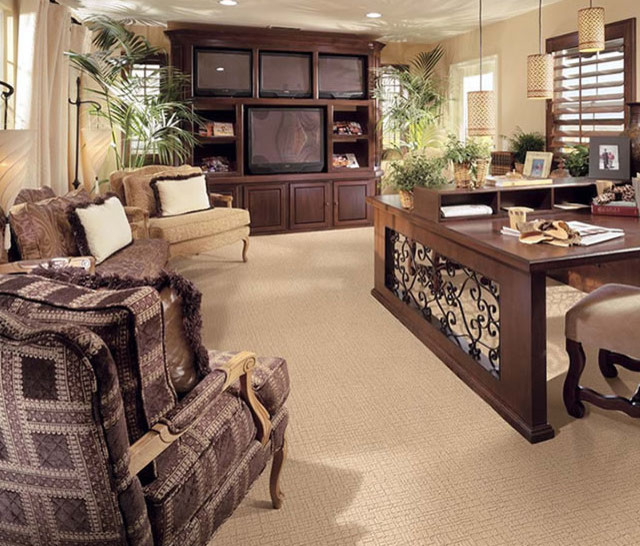 Kamera Stainmaster Carpet Contemporary Living Room