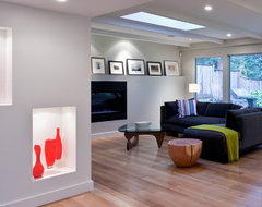 Knopp Scott Residence contemporary-living-room
