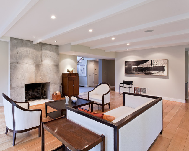 Knopp Scott Residence contemporary-living-room