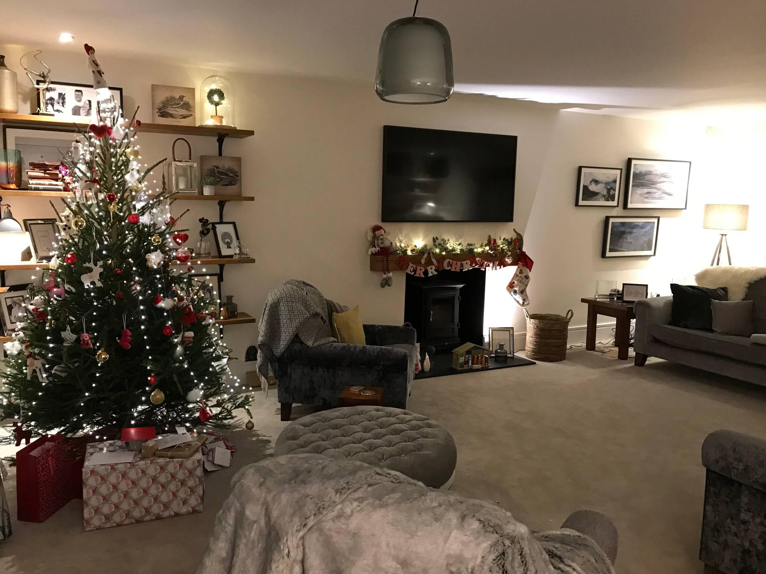 Large Luxury Christmas living room