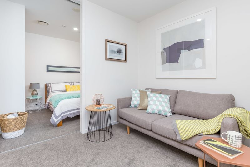 Inspiration for a small modern open concept carpeted and gray floor living room remodel in Auckland with white walls
