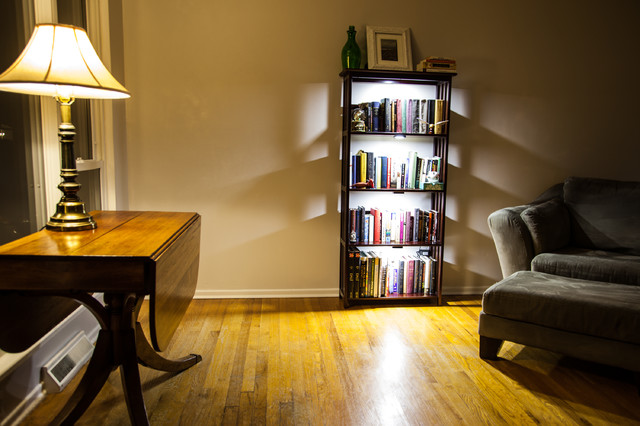 Led Bookcase Lighting Traditional Living Room St Louis