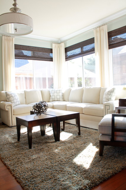 Light and Airy Blue Transitional Home transitional-living-room