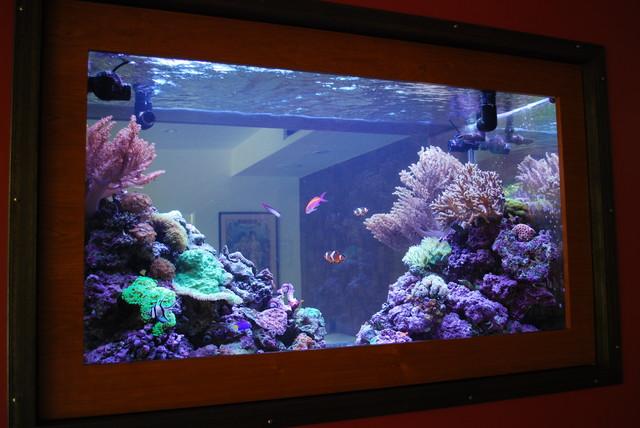 200 gallon living reef custom aquarium double-sided in-wall -living ...