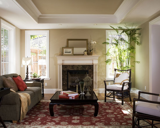 Tray Ceiling Living Room Design Ideas Pictures Remodel And Decor