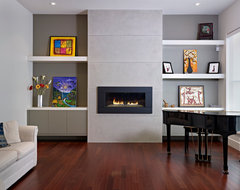 Living Room contemporary-living-room