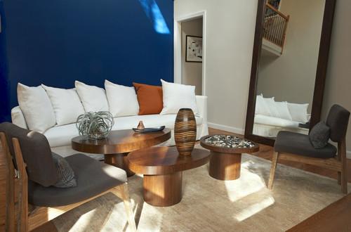 Contemporary Living Room by Brooklyn Interior Designers & Decorators Raine Heidenberg Interior Design