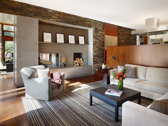 Living room - modern living room idea in Los Angeles with a two-sided fireplace