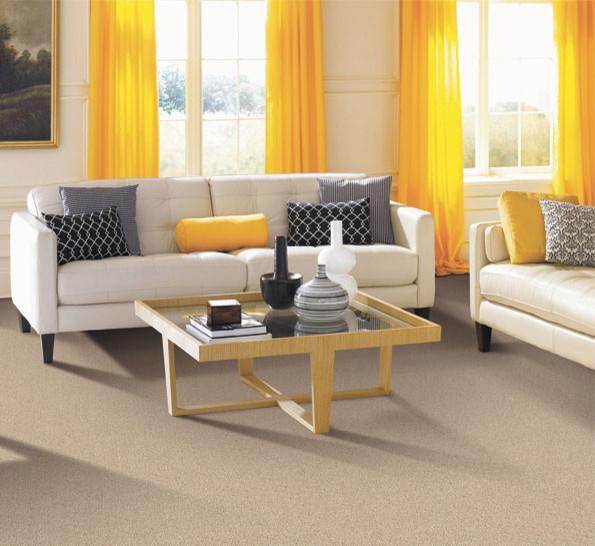 Living room for Salon classique chic