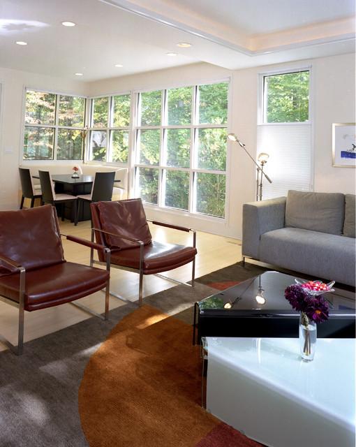 Roth contemporary-living-room