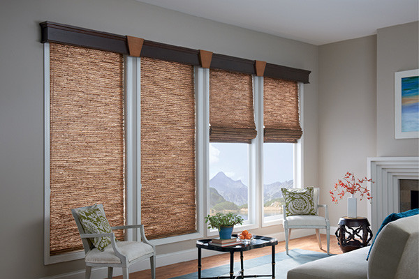 LIVING ROOM Window Treatments Modern Living Room Denver By Windows Dr