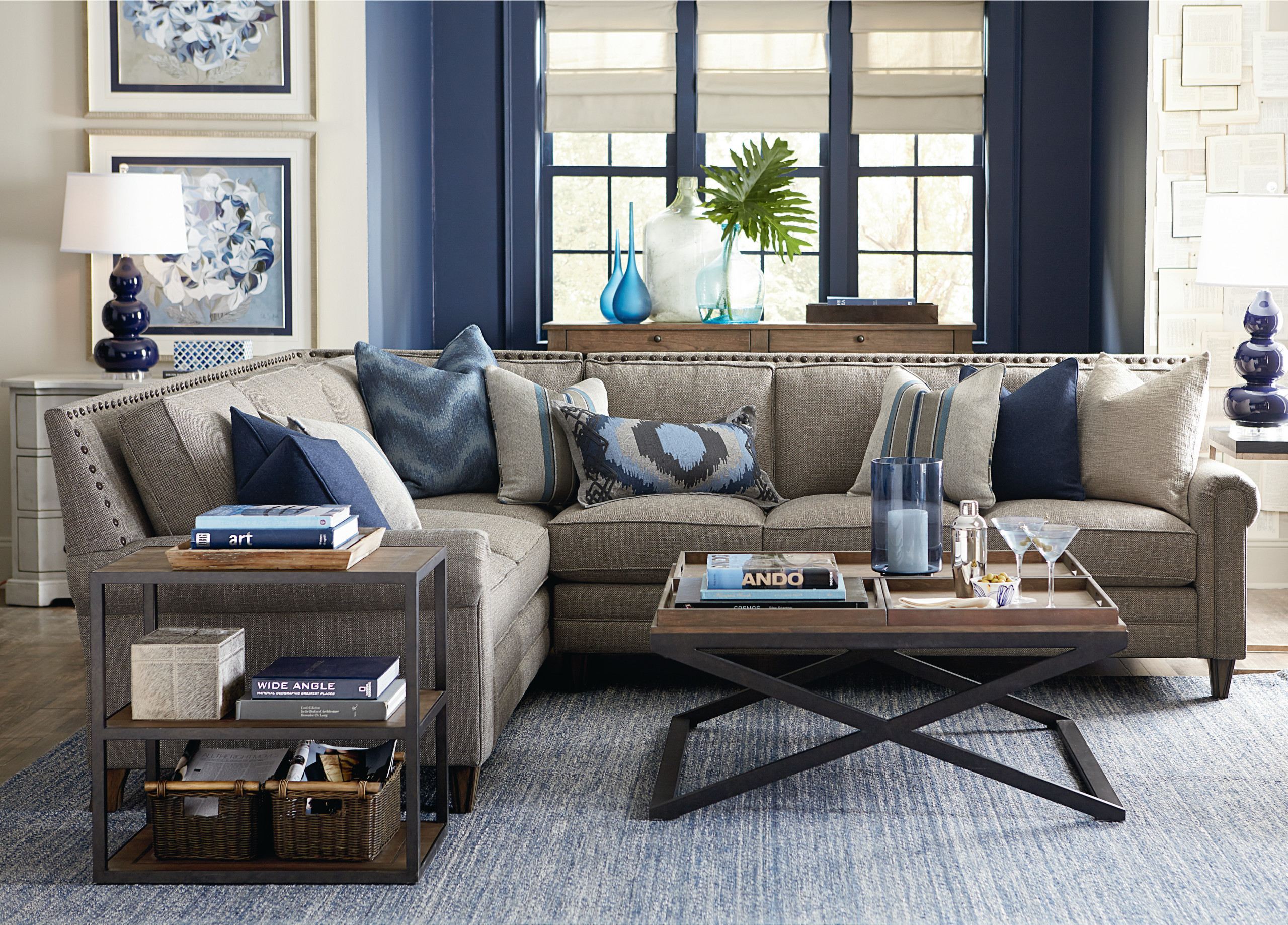 Blue Gray Living Room Ideas Photos Houzz