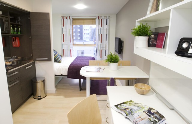London Compact Studio Apartment Modern Living Room