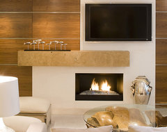 Warm Contemporary contemporary-living-room