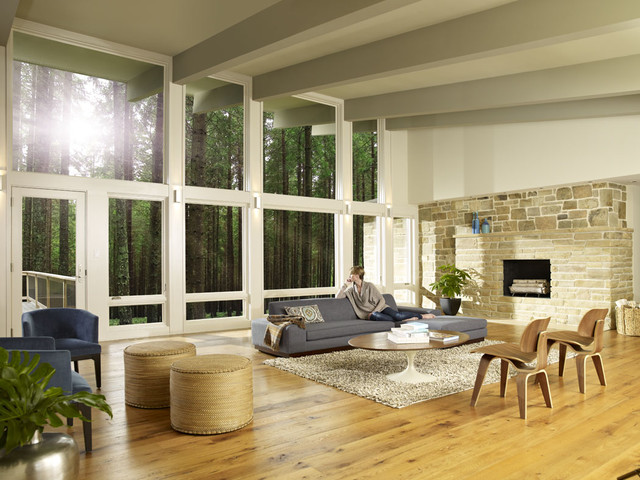 Marvin Windows modern-living-room