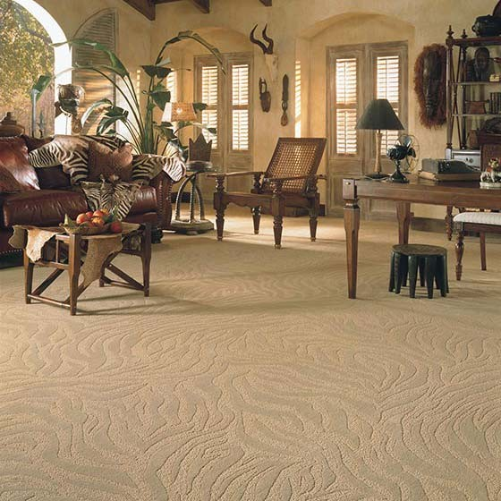 Masai Wave Carpet Contemporary Living Room Orange County - Carpeted living rooms