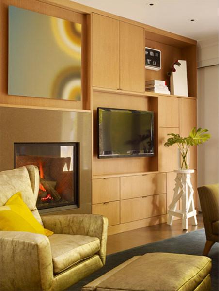 Metropolitan Home magazine S.F. 2009 showhouse modern-living-room