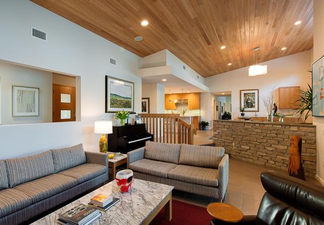mid century modern style living  modern  living room
