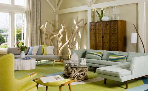 Houzz Modern Living Room Design