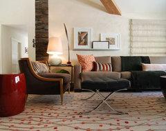 MJ Lanphier modern-living-room