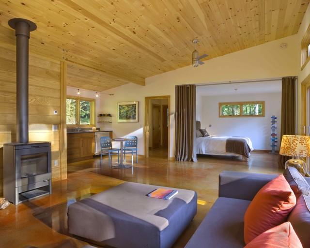 Modern Cabin modern-living-room