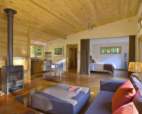 Modern Cabin modern living room
