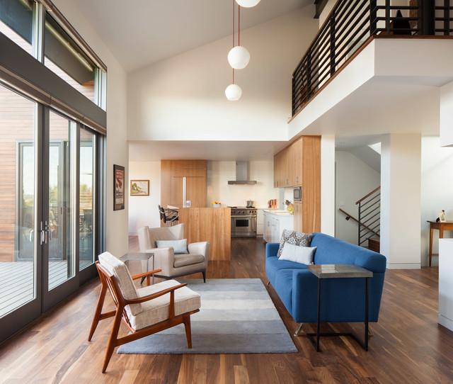 Modern Colorado contemporary-living-room